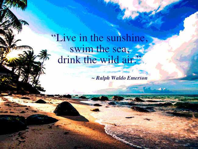 """Live in the sunshine, swim the sea, drink the wild air."" Ralph Walso Emerson"
