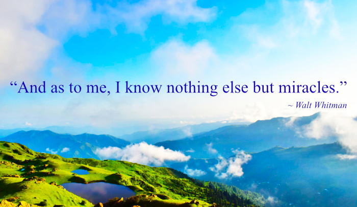 """""""As to me, I know nothing else but miracles."""" Walt Whitman"""