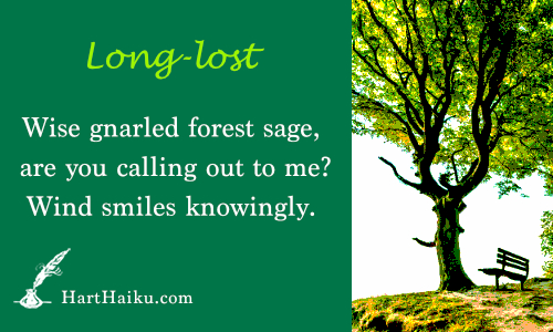 Long-lost | Wise gnarled forest sage, are you beckoning to me? Wind smiles knowingly. | HartHaiku.com