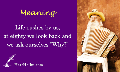 "Meaning | Life rushes by us, at eighty we look back and we ask ourselves ""Why?"" 