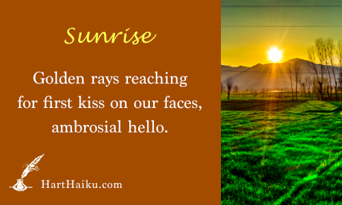 Sunrise | Golden rays reaching for first kiss on our faces, ambrosial hello. | HartHaiku.com