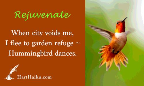 Rejuvenate | When city voids me, I flee to garden refuge ~ Hummingbird dances. | HartHaiku.com