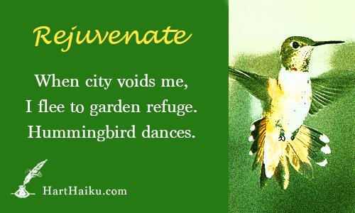 Rejuvenate | When city voids me, I flee to garden refuge. Hummingbird dances. | HartHaiku.com