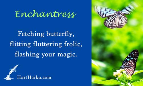 Enchantress | Fetching butterfly, flitting fluttering frolic, flashing your magic. | HartHaiku.com