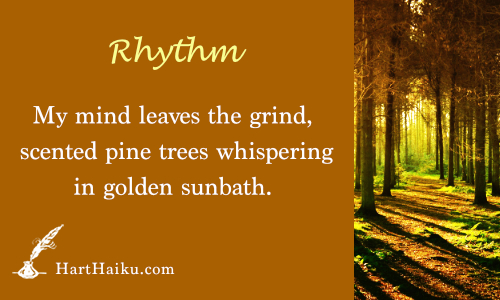 Rhythm | My mind leaves the grind, scented pine trees whispering in golden sun bath. | HartHaiku.com