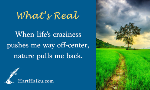 What's Real | When life's craziness pushes me way off-center, nature pulls me back. | HartHaiku.com