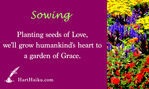 Sowing | Planting seeds of love, we'll grow humankind's heart to a garden of Grace. | HartHaiku.com