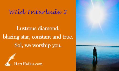 Wild Interlude 2 | Lustrous diamond, blazing star, constant and true. Sol, we worship you. | HartHaiku.com