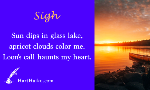 Sigh | Sun dips in glass lake, apricot clouds color me. | Loon's call haunts my heart. | HartHaiku.com