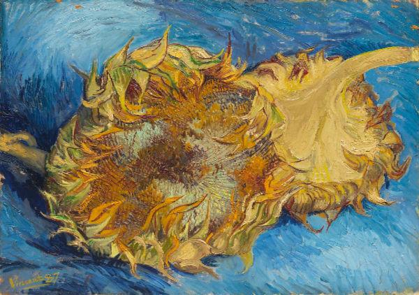 Sunflowers_VanGogh